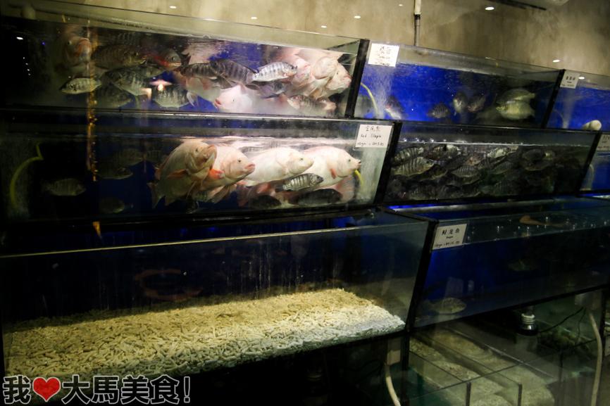 有米气, 顺德料理, youmiqi cuisine, jalan yap kwan seng